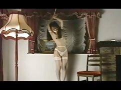 男性の美しい女性のセクシ乳房. 女の子 の ため の エッチ な 動画